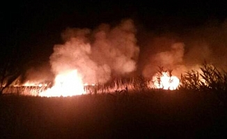 Göksu Deltası'ndaki Yangın Kendiliğinden Söndü