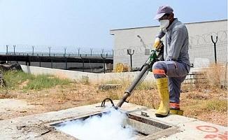 Mersin'de İlaçlama Çalışmaları Sürüyor
