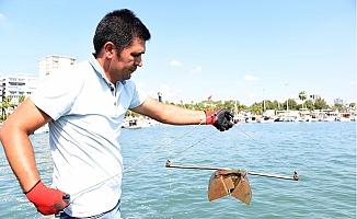 Balıkçı Barınağında Temiz Deniz İncelemesi