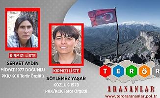 Kırmızı Kategoride Aranan 2 PKK'lı Gara'da Etkisiz Hale Getirildi