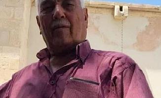 Zeytin Toplarken Kalp Krizi Geçirip Öldü