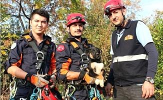 30 Metrelik Kuyuya Düşen Yavru Köpek Kurtarıldı
