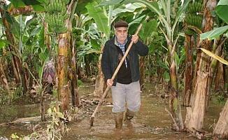 Limonlu Deresi Taştı Seraları ve Narenciye Bahçelerini Su Bastı