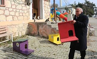 """Mersin Erdemli'de Belediyeden """"Kedi Evi Projesi"""""""