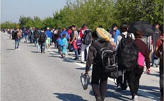Sınırlar Açıldı: Suriyeliler Otobüslerle Yunanistan Yolunda