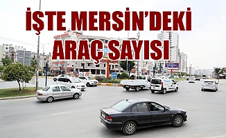 Mersin'de  ve Adana'da Trafiğe Kayıtlı Araç Sayısı Ne Kadar