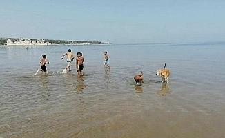 Kızkalesi Plajı'nda Çocuklar Yasağa Rağmen Denize Girdi