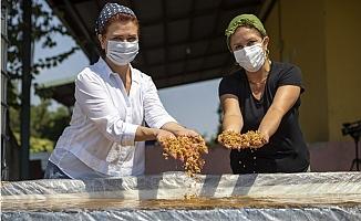 Atalık Sarı Buğday Kadınların Emeği İle Altına Dönüşüyor