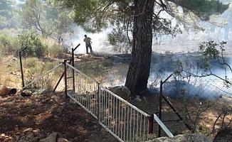 Silifke'deki Yangında Kızılçam Ormanı ve Tarım Arazisi Zarar Gördü