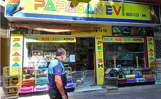 Akdeniz Belediyesi Zabıta, Pet Shopları Denetledi.
