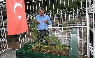 Şehit Öğretmen Temizkan, Mezarı Başında Anıldı