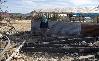 Ağılları Yanan ve Hayvanları Telef Olan Teslime Ersoy'a Büyükşehir Umut Oldu