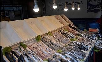 Balık Tezgahında Renkli Işık Hilesi