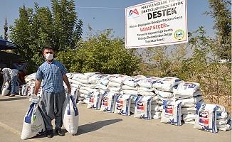 Büyükşehir'den Süt Üreticilerine Kaba Yem Tohumu Desteği