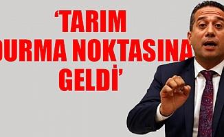 """""""Saray  Kafasını Kaldırıp Ardahan'a ve Anadolu'ya Baksın"""""""
