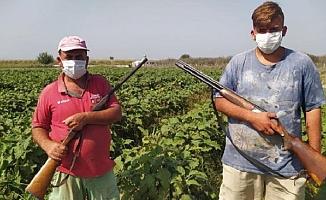 Sebze ve Meyve Üreticileri Tüfekle Nöbet Tutuyor