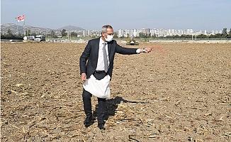 Başkan Bozdoğan Evladiyelik Buğday Ata Tohumunu Toprakla Buluşturdu