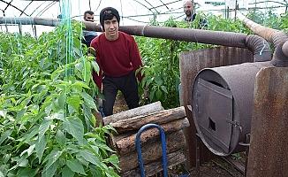 Antalya'da Üreticinin Meşakkatli Don Nöbeti