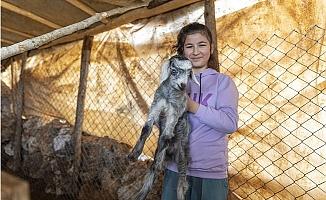 'Haydi Gel Köyümüze Destek Verelim' Projesi, Yeni Doğumlarla Büyüyor
