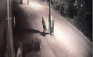 Mersin'de Hırsızlar Önce Güvenlik Kamerasına Sonra Polise Takıldı