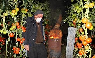 Meteoroloji Uyarınca Erdemli 'de Üreticiler Zirai Don Nöbetine Geçti.