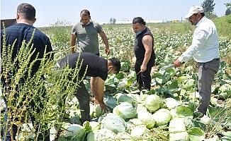 Tarsus Belediyesinin Dayanışma Ağına Üreticiden Destek