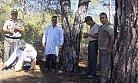 Bin 250 Adet Zararlı Kabuk Böceği Yırtıcısı Ormana Bırakıldı