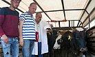 Erdemli'de 7 Çiftçiye 42 Damızlık Düve