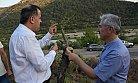 Gülnar'da Yabani Zeytin Aşılamada Hedefler Aşıldı