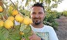 Kansere Karşı Koruyucu Olan 'Guava'nın Hasadına Başlandı.