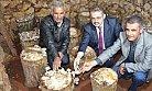 Kayın Mantarı Mersin'de Üreticiyi Sevindirdi.