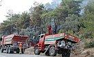 Silifke'de Orman Yangınında 10 Dönümlük Alan Yandı