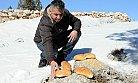 Yaban Hayvanlarına Kar Yağışından Dolayı Yem Desteği