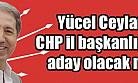 Yücel Ceylan CHP İl Başkanı Adayı mı ?