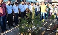 Tarsus'ta Gaziler Gününde 500 Fidan Toprakla Buluşturuldu