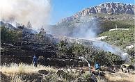 Bozyazı'da Makilik Alanda Meydana Yangında Seralar Hasar Gördü