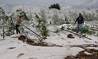 Erdemli'de Dolu Nedeni İle Tarım Arazileri Zarar Gördü