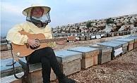 Dünya Turuna Çıkan Alman, Arı Kovanı Üzerine Gitar Çaldı