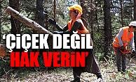 Orman İşçisi Kadınlar, Sendikal Hakları İçin Seslendi