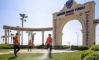 Sıcaklık Artışları Mersin'de Haşereyi Artırdı