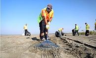 Büyükşehir Sahilleri Petrol Atıklarından Temizlemeye Devam Ediyor