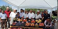 Erdemli'de Yayla Köyleri Yaş Sebze ve...