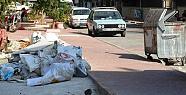 Hamidiye Mahallelerin Çöp Sorunu