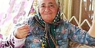 Kangal Köpeği Yaşlı Kadını Hastanelik Etti