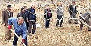 Mersin Büyükşehir Belediyesi'nden Antep Fıstığı Üreticilerine Eğitim
