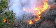 Mersin'de Sazlık Alanda Yangın