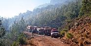Mersin'deki Orman Yangını