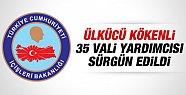Ülkücü Kökenli 35 Vali Yardımcısı