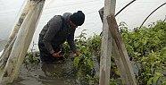Ziraat Bankası'ndan Afet Mağduru Mersinli