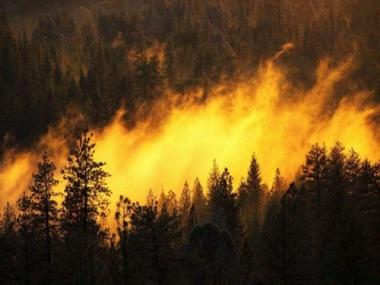 Yanan Araçtan Sıçrayan Alevler 7 Hektar Ormanı Kül Etti